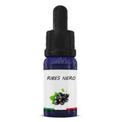 Aroma Ribes Nero 10 ML - Enjoysvapo